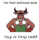 TRY A TING NUH  by  FIRST SERENADE BAND